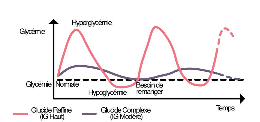 Impact des glucides raffinés avec un IG haut sur la glycémie
